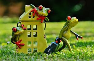 Jak wybrać mieszkanie